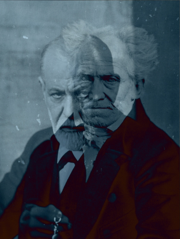 schopenhauer y Freud - Adolfo Vasquez Rocca